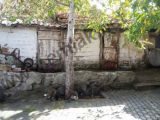 kentsel  donusum  yerınde  olan  mustakıl  bahcelı   ahsap   ev    satlık